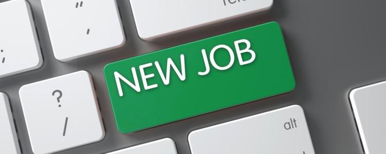 Aktualne oferty pracy